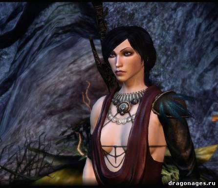 Dragon age origins спутники подарки 407