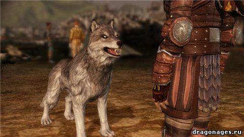 Волк лучший друг человека превью