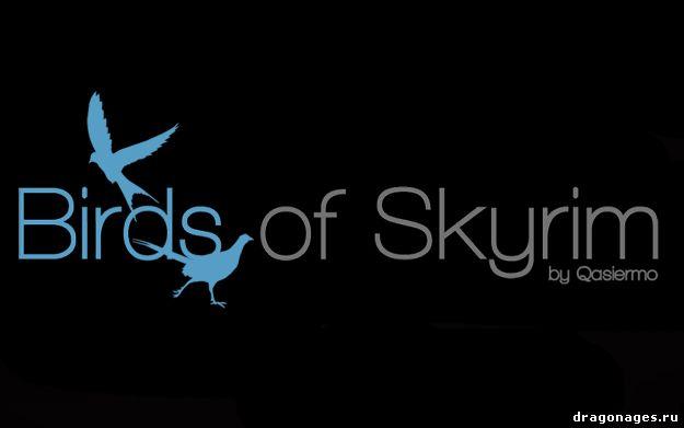 Птицы в Skyrim, превью